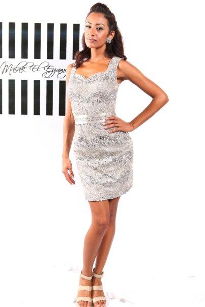 Silver Embellished Cocktail Dress